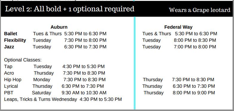 level 2 class options